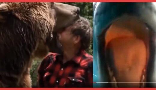 【閲覧注意】野生動物が人間に本気で咬みつく瞬間。身の毛がよだつ恐怖映像に心臓が縮み上がる……