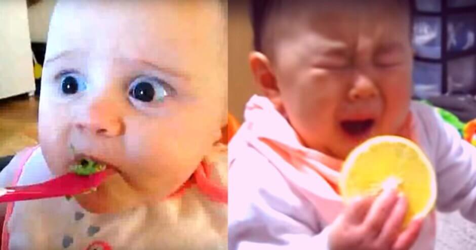 【癒し動画】赤ちゃんが初めて○○を食べた時のリアクション5選!これを見たあなたは自然と笑みがこぼれてしまうでしょう