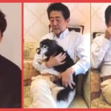 【炎上】安倍総理が星野源さんの歌を流しながら自宅でくつろぐ動画を公開した結果ww→ネットの声「優雅ですねぇ。みんな死に物狂いなのに」